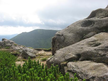 Кам'яні мордочки з вухами