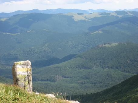 Чорногірський стовпчик з міткою на фоні нижчих гір