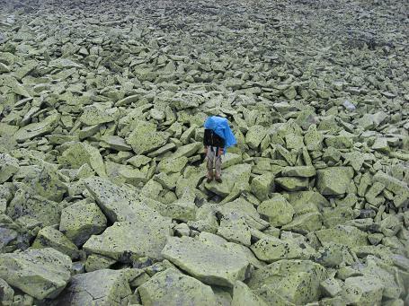 Безкраї простори мокрих слизьких кам'яних брил