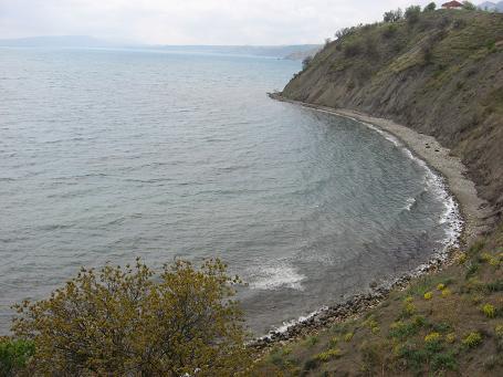 82-shore