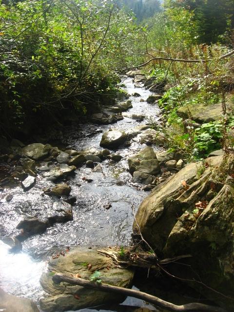 cherleny-river