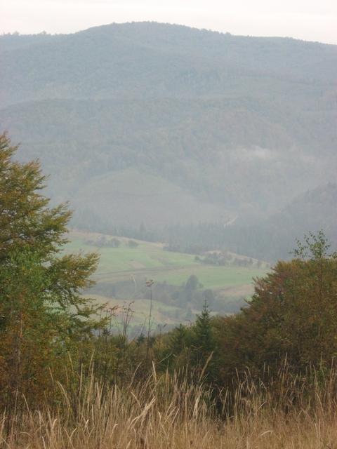 tyrsa-view