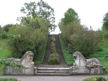 Леви в парку