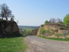 Mezhyrich