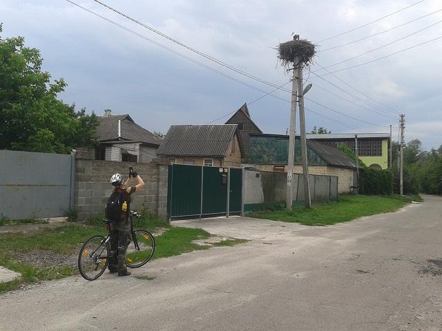 Лелечі помешкання – не рідкість на сільських вулицях