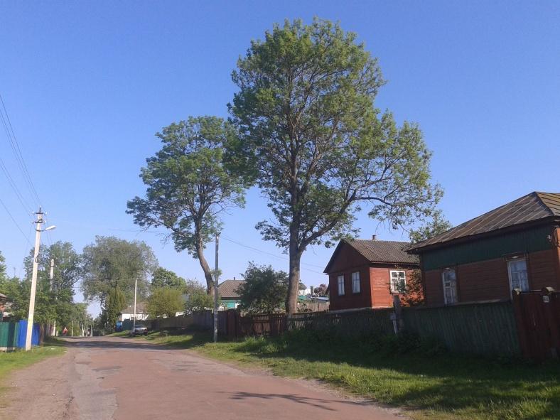 На одній з головних вулиць містечка Кролевець. Чимало людей ще й досі мешкає у дерев'яних хатах.