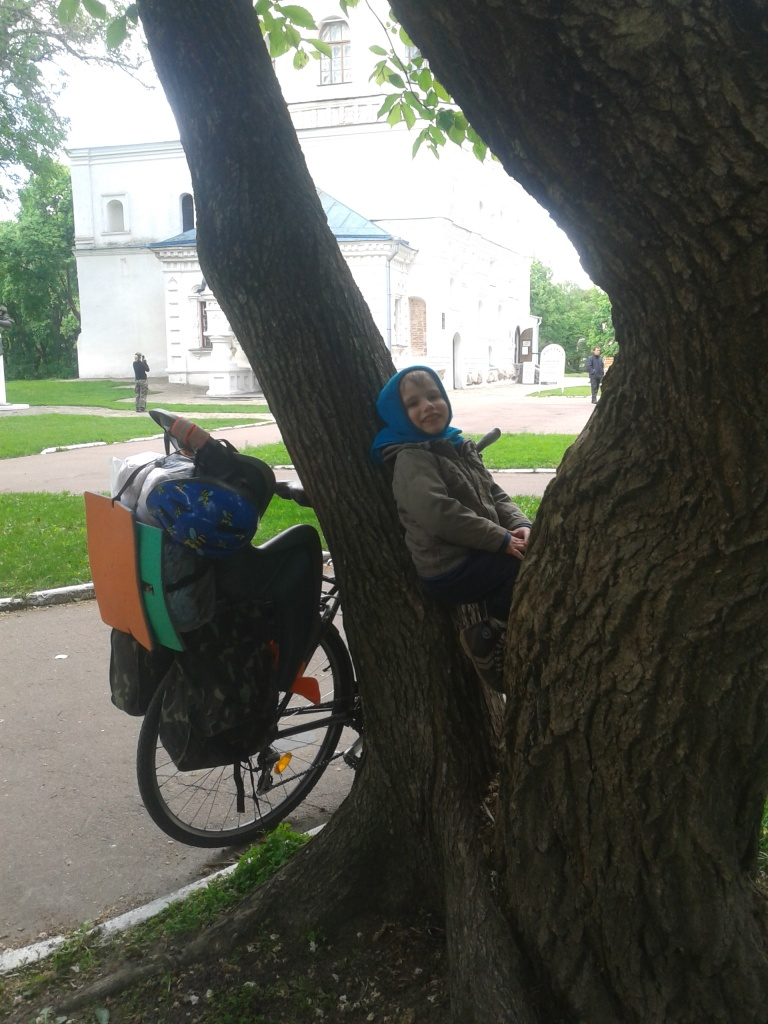 Нестор і дерево, на яке він сам заліз