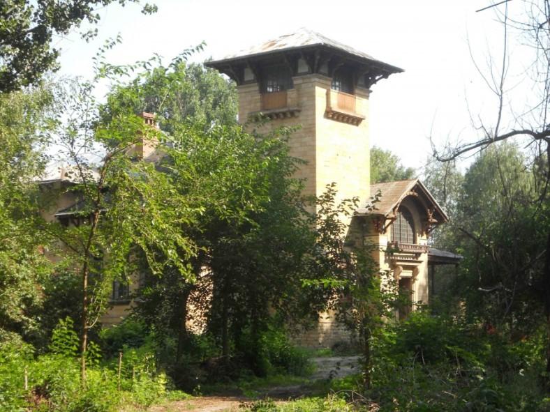 mscykhovskiy