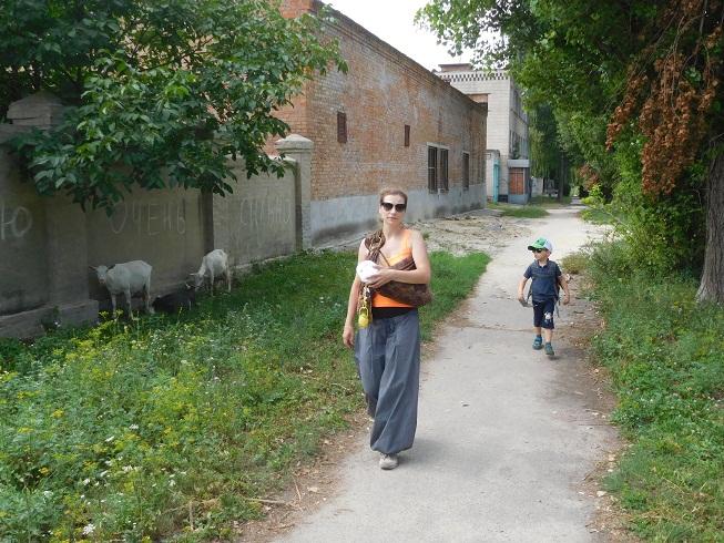 01 Goats